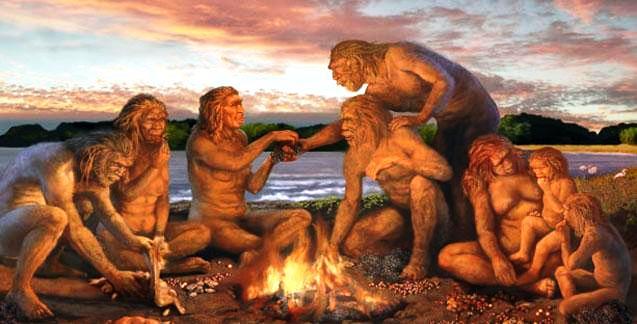 Evolution fire